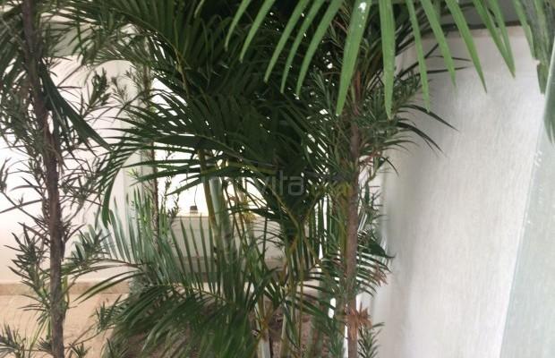 Foto ᄍ19 Apartamento Venda em Bahia, Porto Seguro, Centro